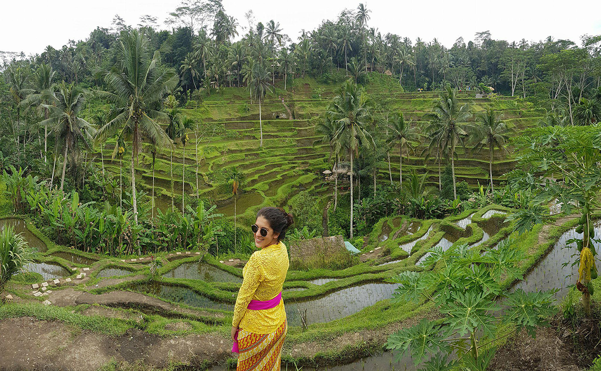 cosa vedere a Bali - tegalalang ricefield risaie terrazzate ubud